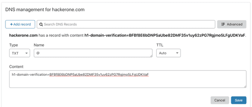 domain verification example of using DNS TXT